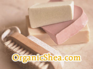 OWC Domain Auction - OrganicShea.com