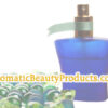 AromaticBeautyProducts.com is available at OWC Auctions