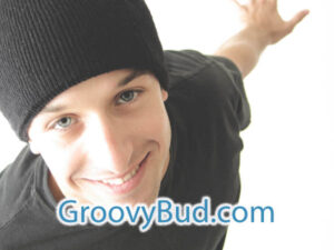 GroovyBud.com is available at OWC Auctions