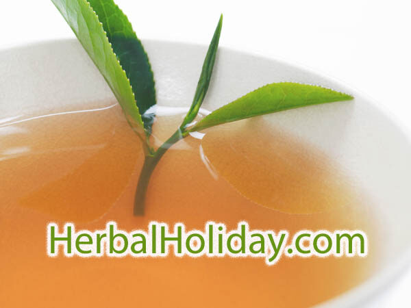 HerbalHoliday.com is available at OWC Auctions