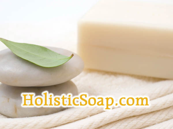 HolisticSoap.com is available at OWC Auctions