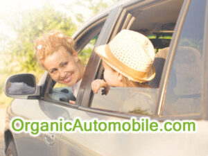 OrganicAutomobile.com is available at OWC Auctions