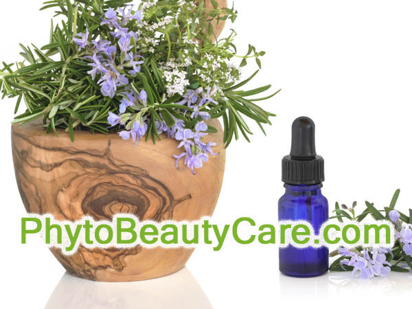 PhytoBeautyCare.com is available at OWC Auctions