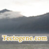 Tectogene.com for sale at OWC Auctions